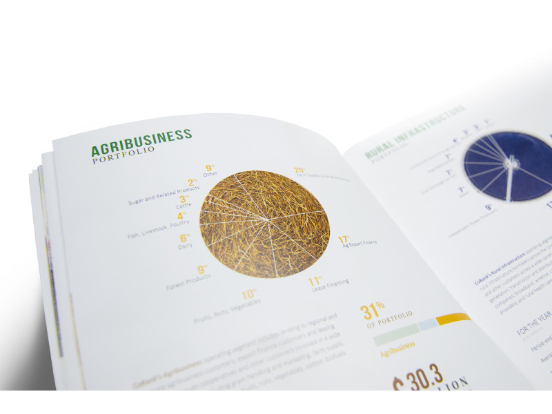 CoBank – 2017 Annual Report – Pie Chart Detail