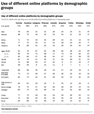 use of different online platforms by demographic groups