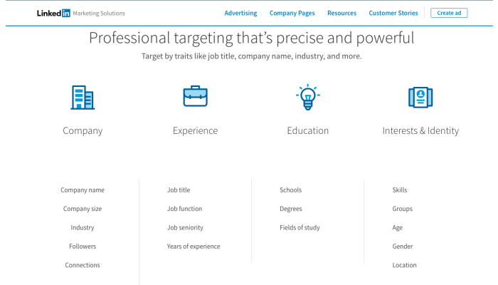 LinkedIn Professional targeting that's precise and powerful