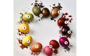Ostereier färben: Ganz natürlich