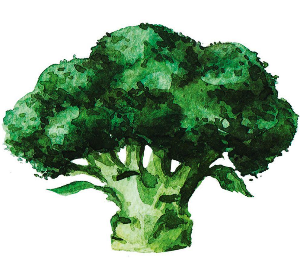 [BROCCOLI](https://www.wildeisen.ch/zutaten/broccoli): Broccoli schmeckt würziger als Blumenkohl. Beim Einkaufen darauf achten, dass das Gemüse eine kräftig grüne Farbe und geschlossene Blüten hat und keine gelben Verfärbungen aufweist.