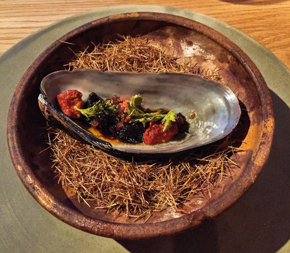 Besonders die Seafoodgänge im «Kadeau» sind herausragend: Riesenmiesmuschel mit Rande und Fichtentrieben.