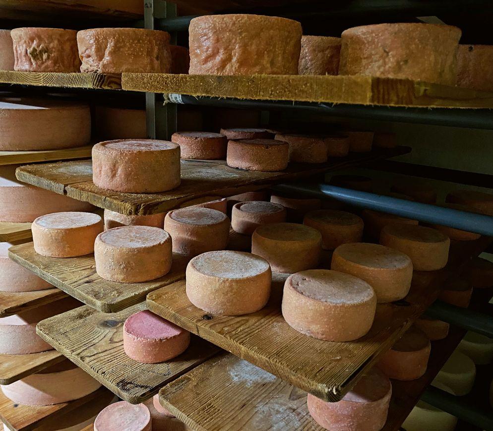 Auf der Alp «Chäseren - holz» reift eine fantas - tische Auswahl an Käse heran.