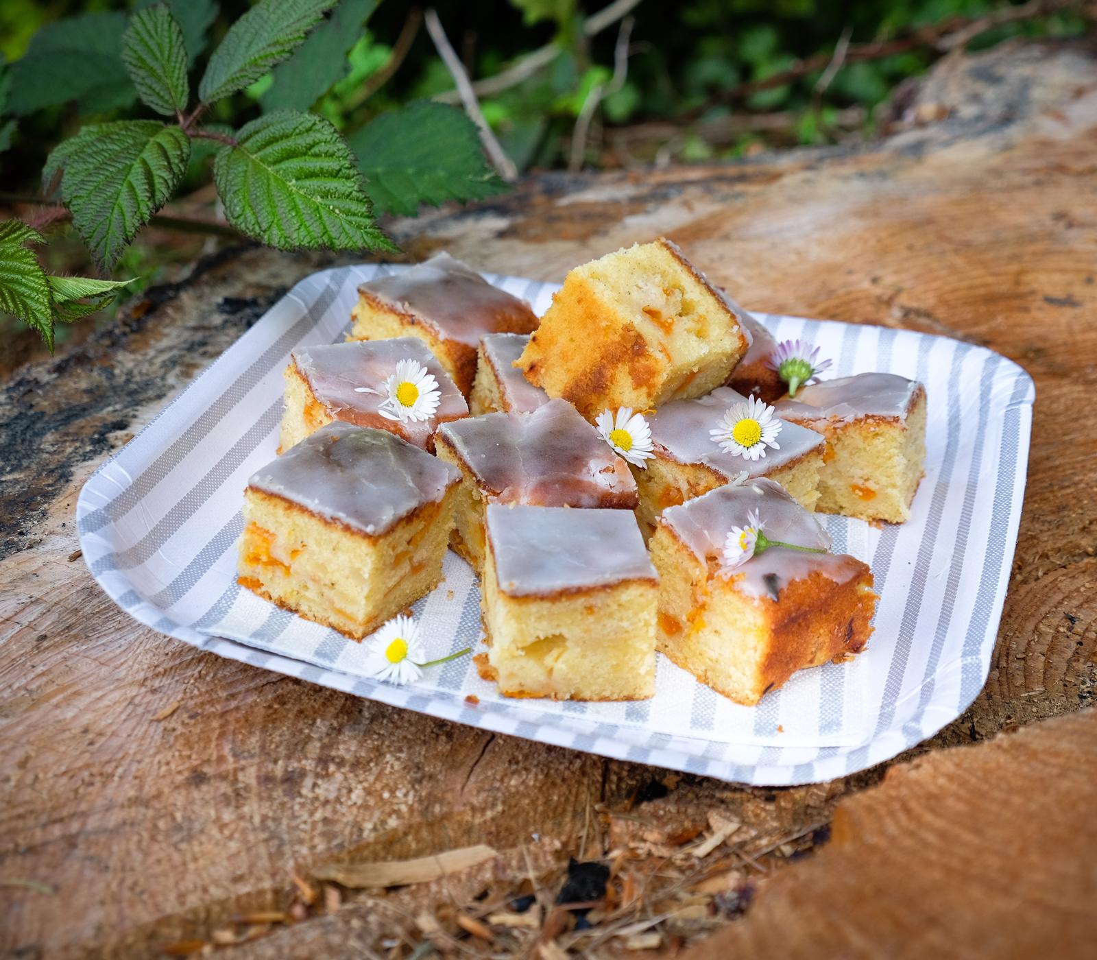 Zitronen aprikosen kuchen annemarie wildeisen 39 s kochen for Kuchen unterschrank 150 cm