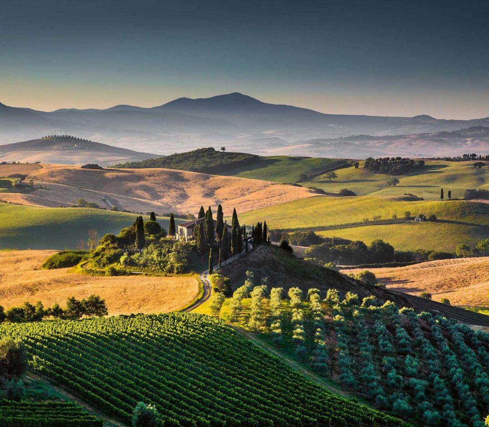 Weinreisen in der Toscana