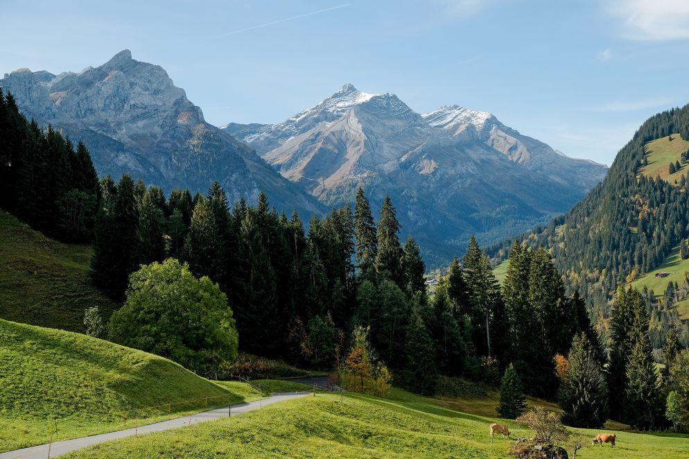 Die Käserei Spitzhorn in Feutersoey hat ihren Namen auch wegen des Hausbergs, dem Spitzhorn.