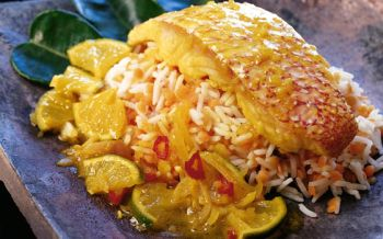 Red Snapper an Limetten-Curry-Sauce