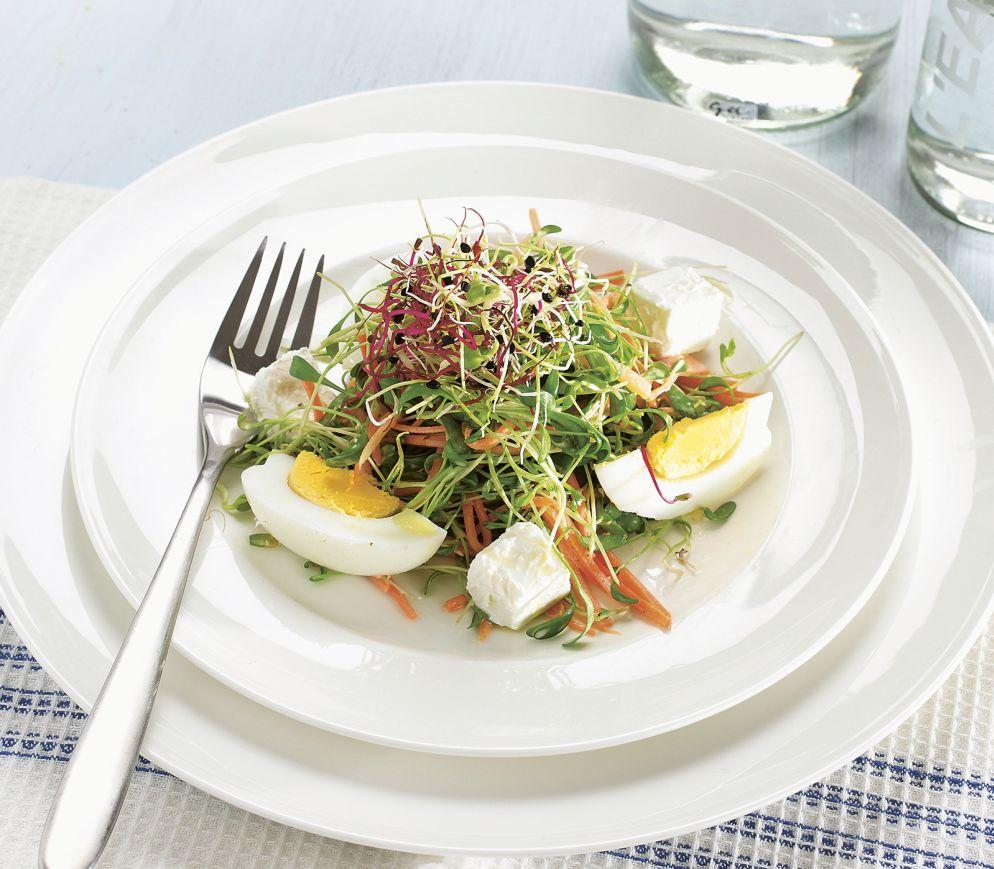"""<a href=""""https://www.wildeisen.ch/rezepte/karottensalat-mit-sprossen-und-kresse"""" target=""""_blank"""">Karottensalat mit Sprossen und Kresse</a>"""