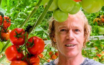 Tomatenzucht: Alles für den Geschmack
