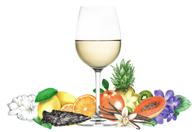 Typical flavors found in Chardonnay wines