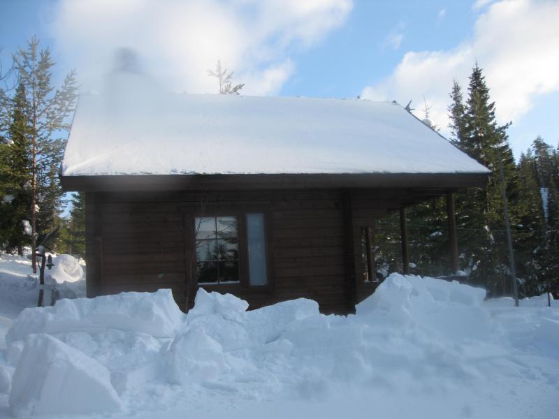 Lumen Pudotus