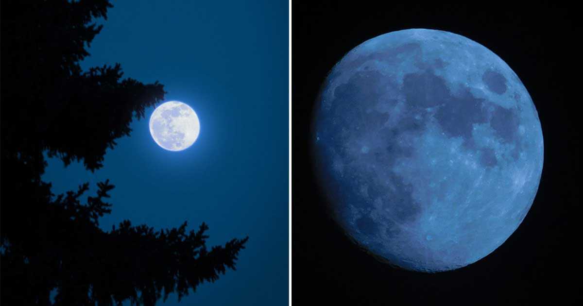 Rare Blue Moon Will Appear Across All Time Zones On Halloween This Year | TOTUM