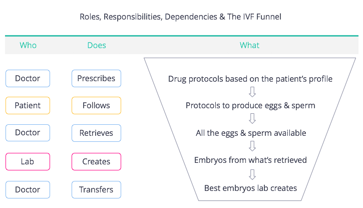 Roles, Responsibilities, Dependencies and the IVF Funnel