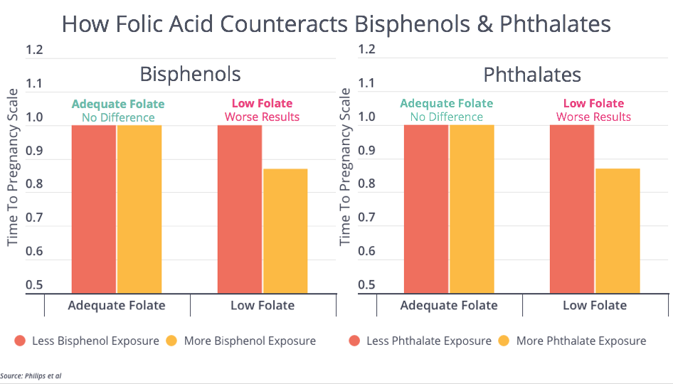 BPA Phthalates and Folic Acid