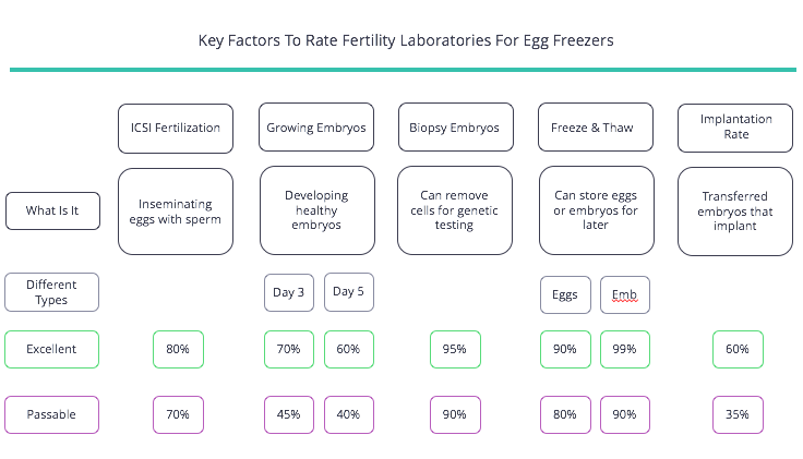 Lab For Egg Freezers