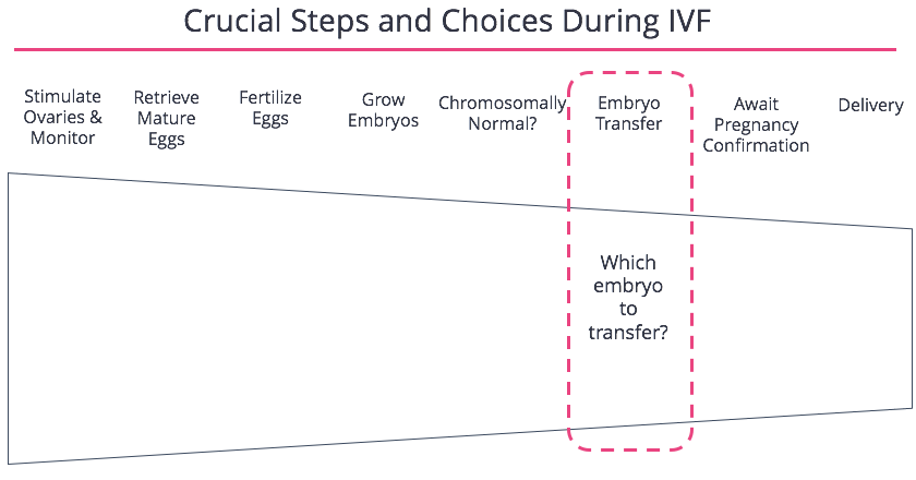 FertilityIQ: Which Embryo To Transfer?