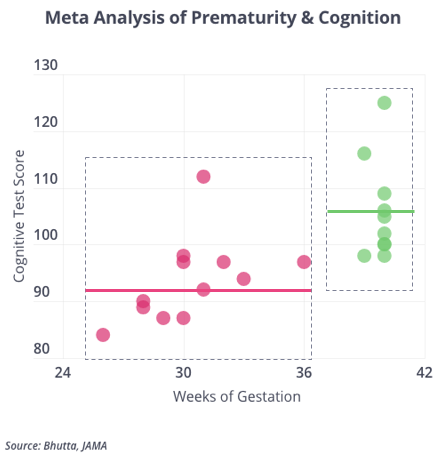 Prematurity and Cognition