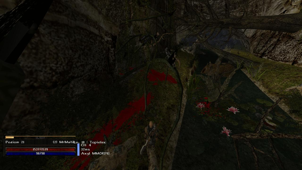 Gothic Online serwer MMORPG Axyl świat ciekawa lokacja