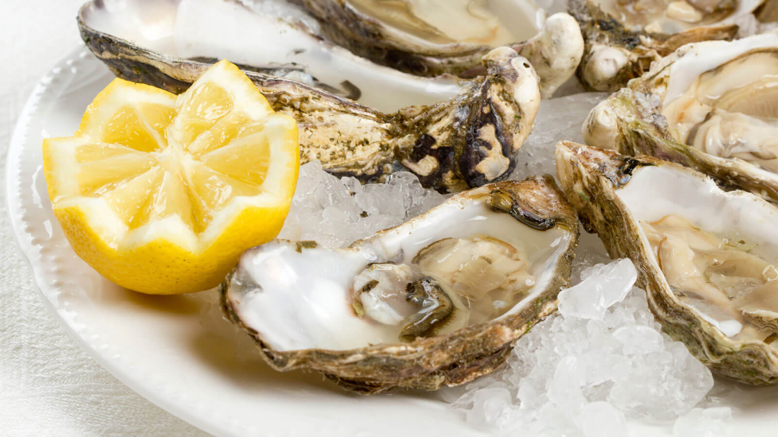 In-Shell Chesapeake Oysters, 12 ct