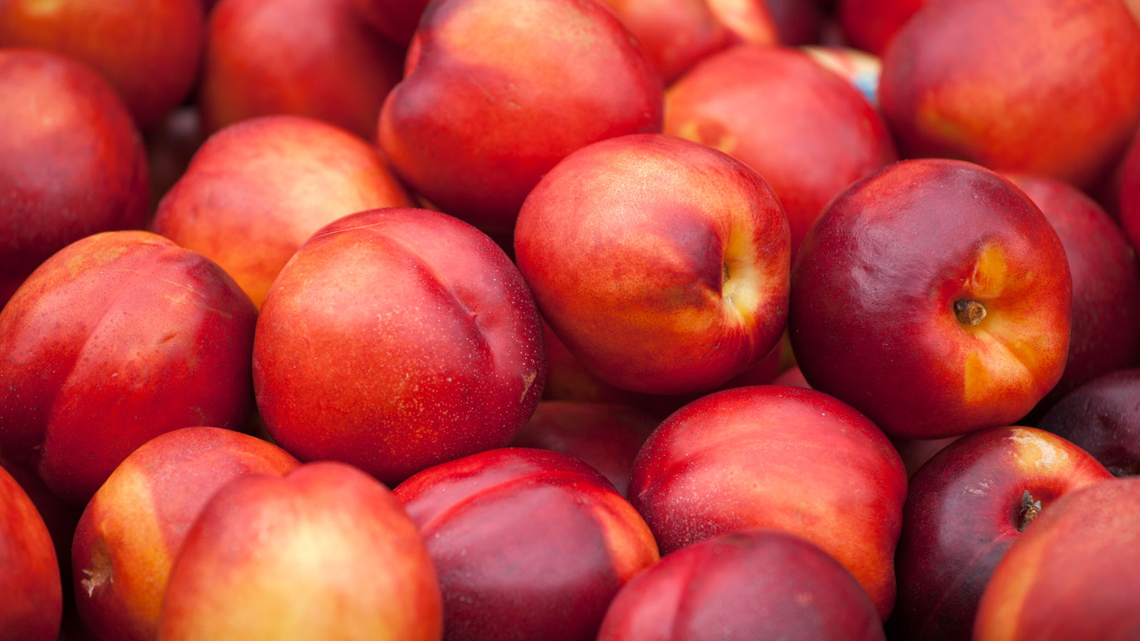 The Fresh Pick: Stone Fruit