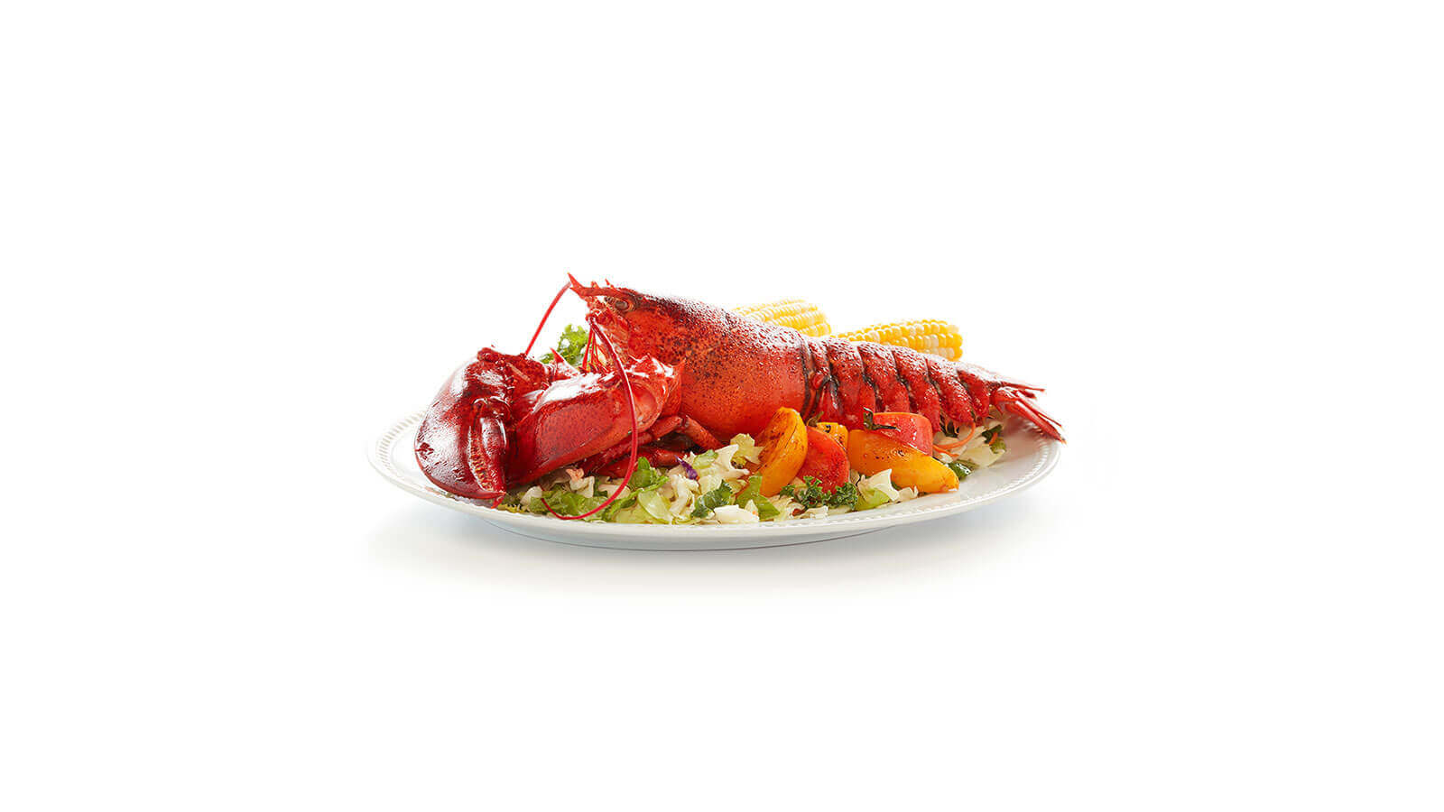 2 - 3 lb Live Lobsters