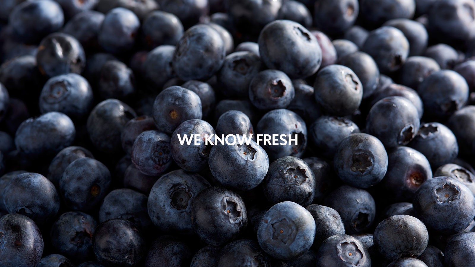 blueberries - we know fresh