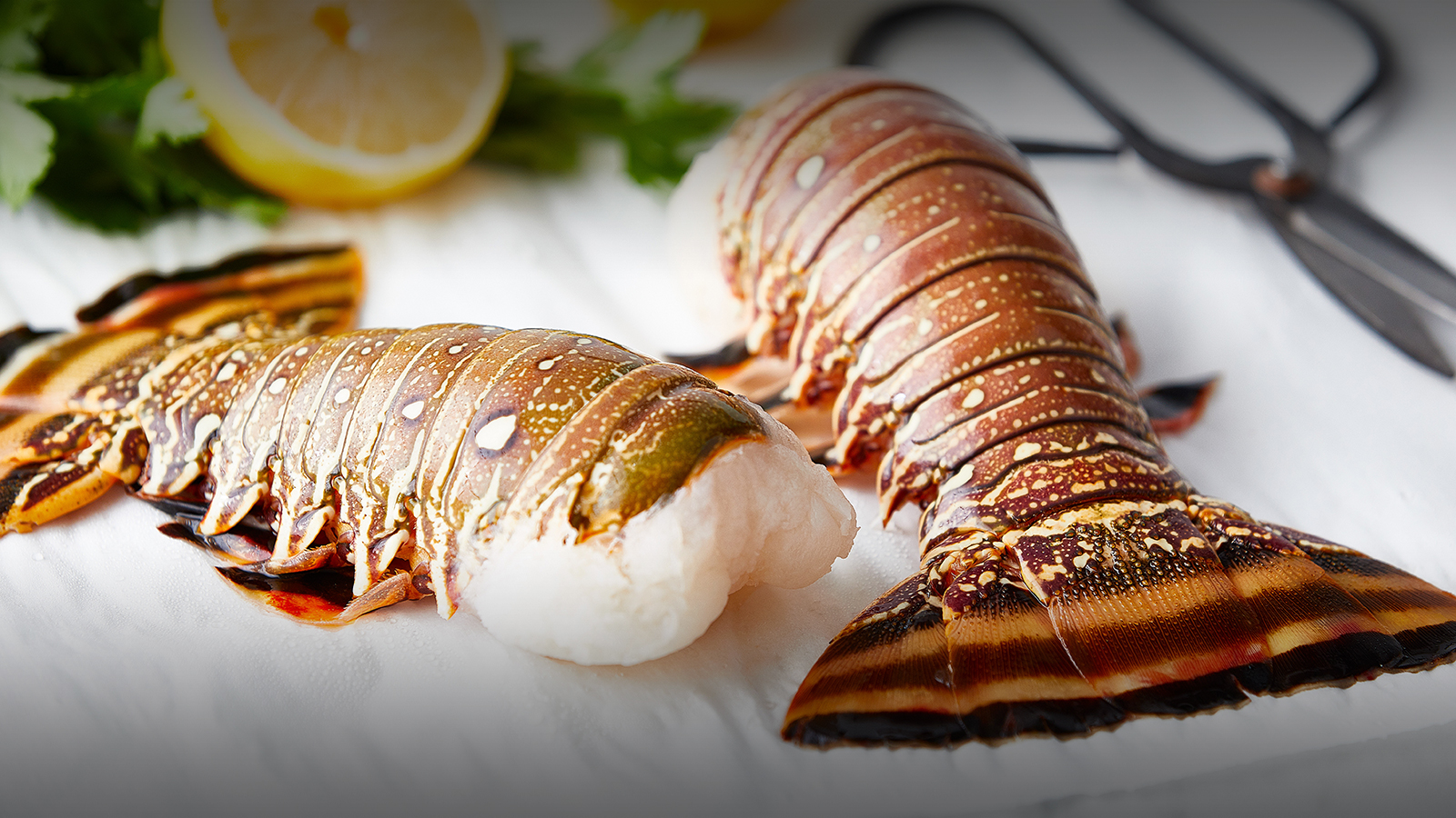 Warm Water Lobster Tail, 10 oz