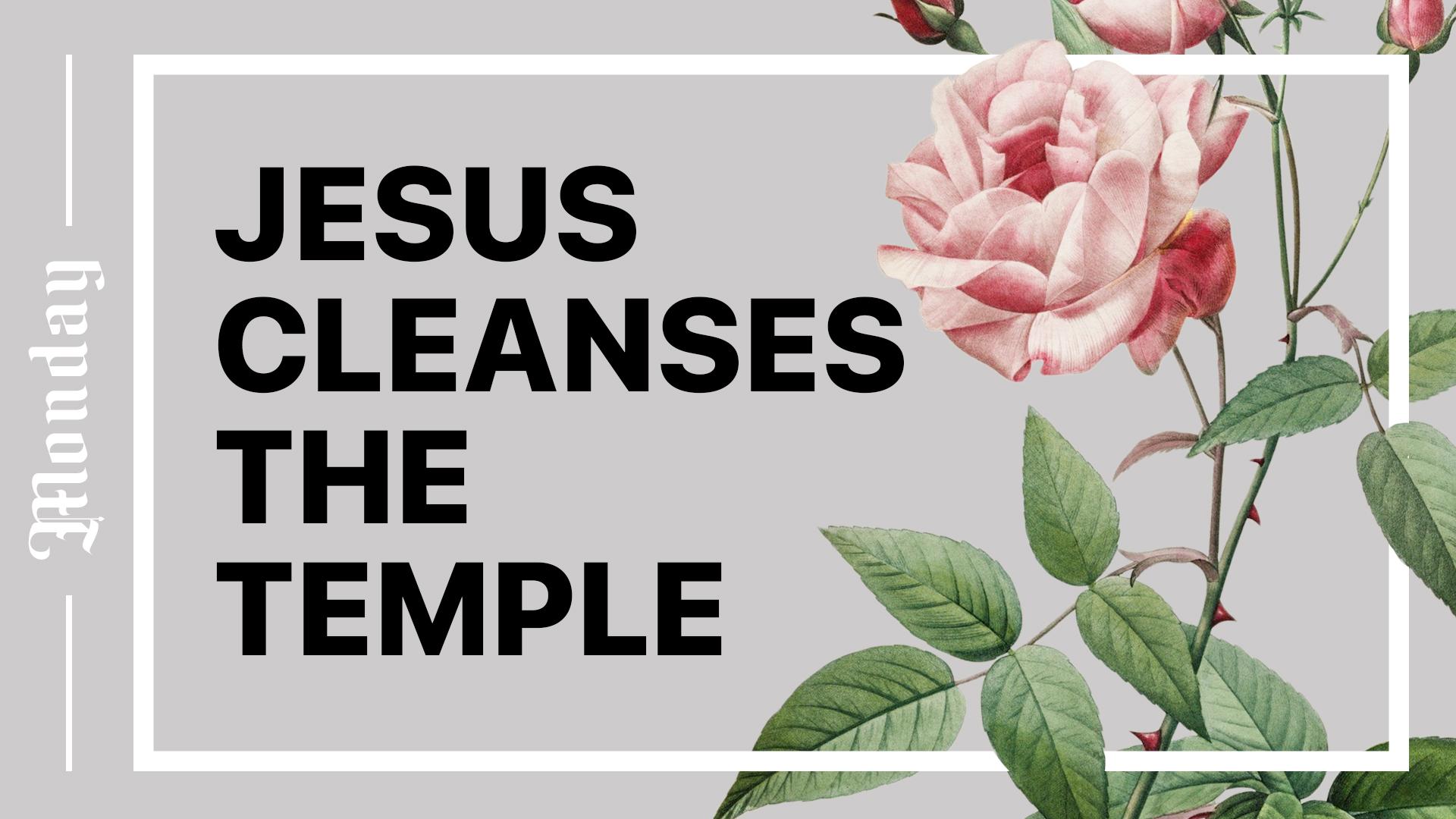 Jesus Cleanses the Temple Hero Image