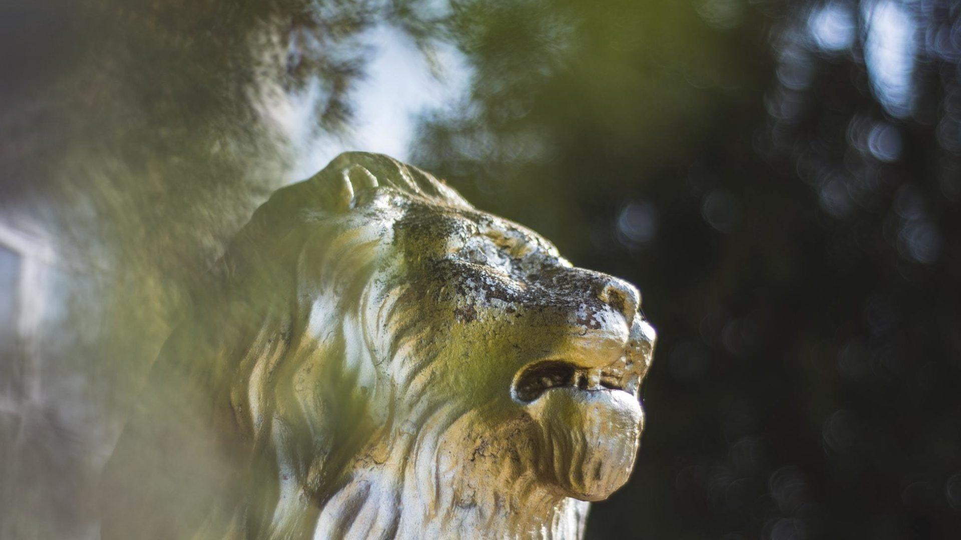 Three Activities for Preschool Families: Daniel & The Lions Hero Image