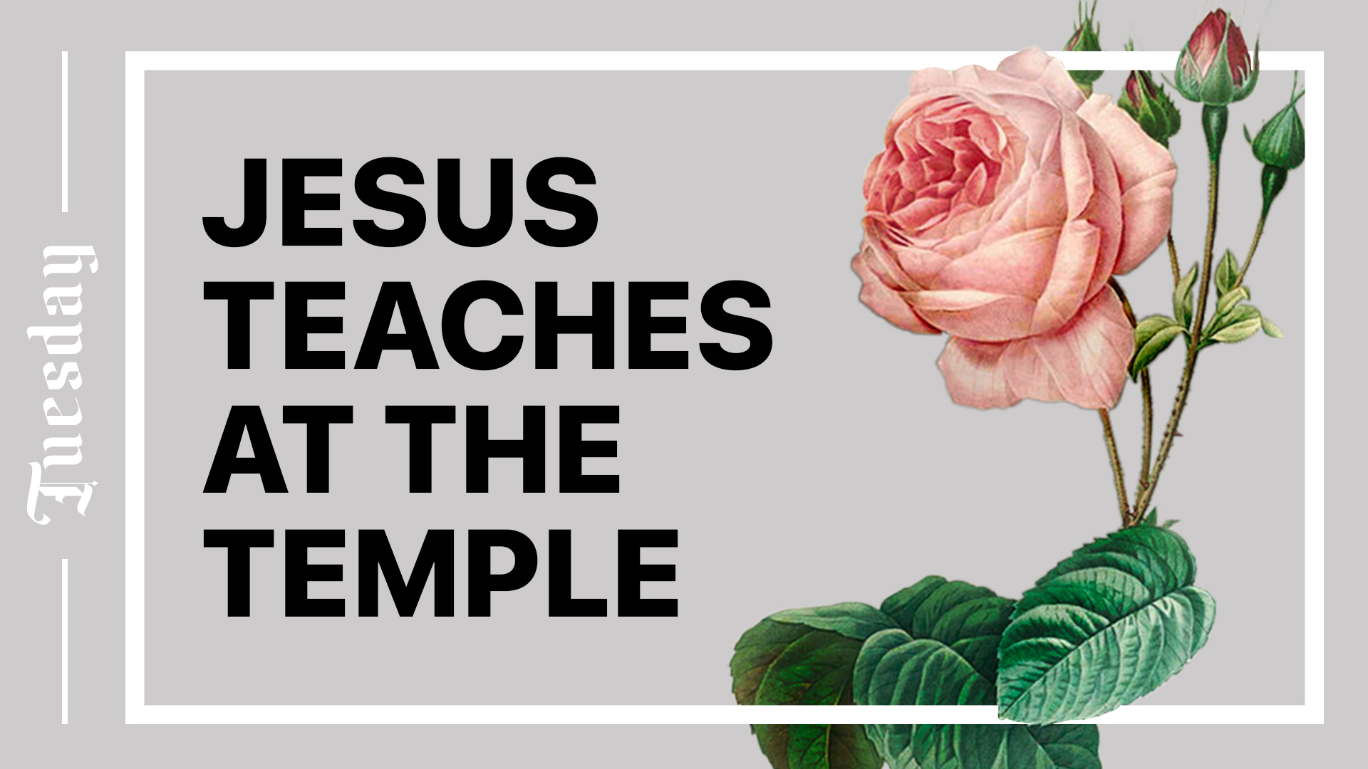 Jesus Teaches at the Temple Hero Image