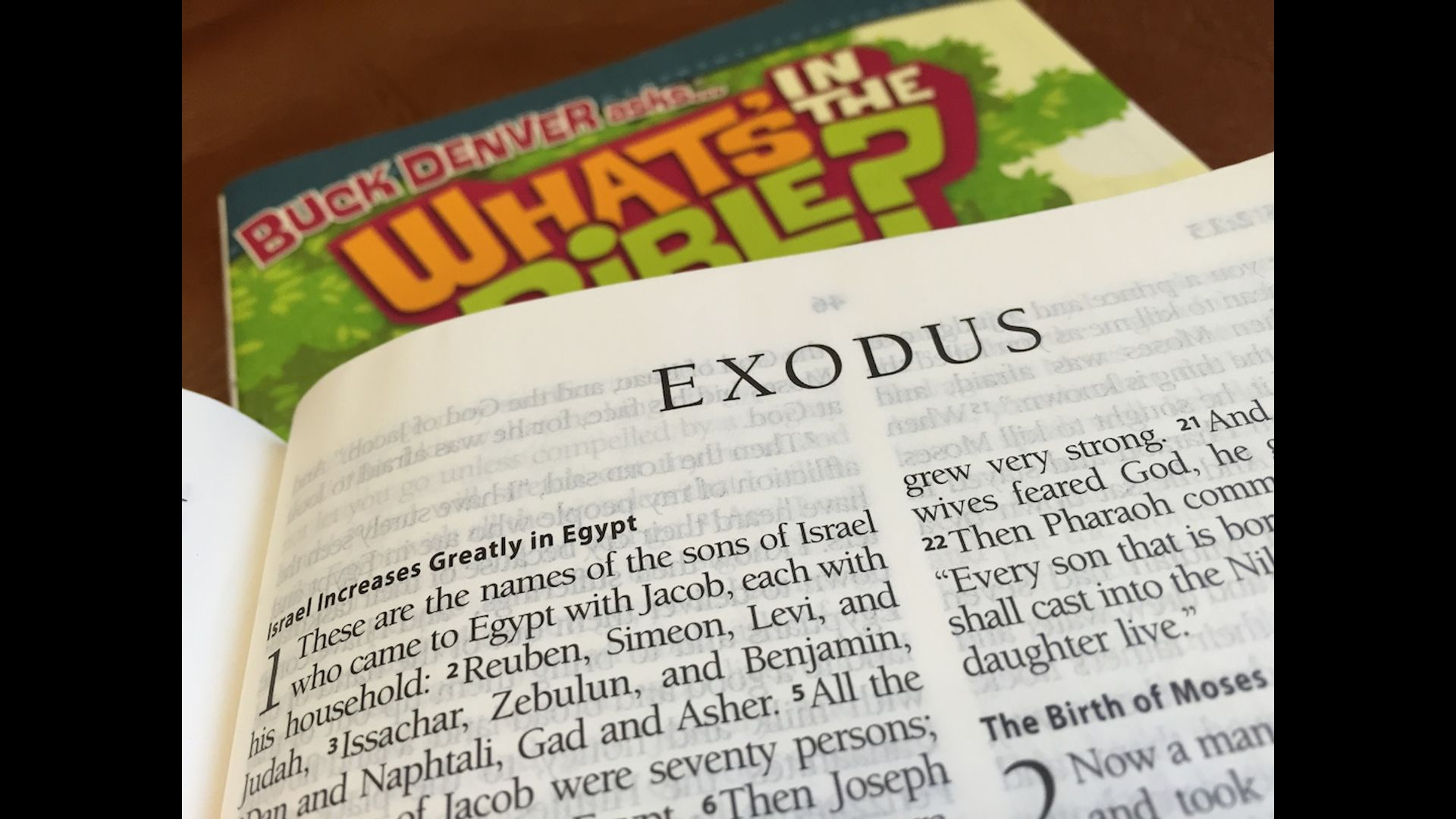 Family Journey Through Genesis & Exodus Hero Image