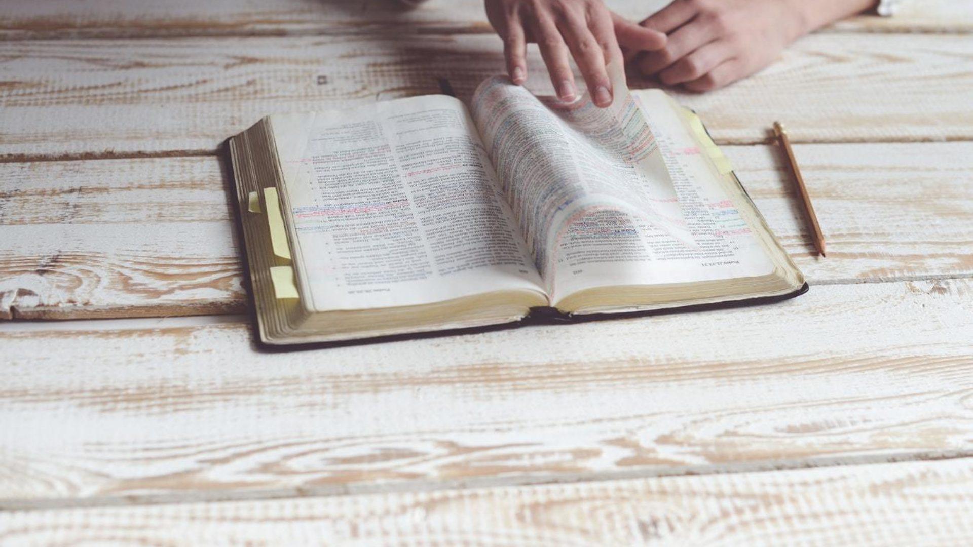 We Believe: The Bible Hero Image