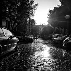 Reflection of the sunlight on the wet street in black and white.