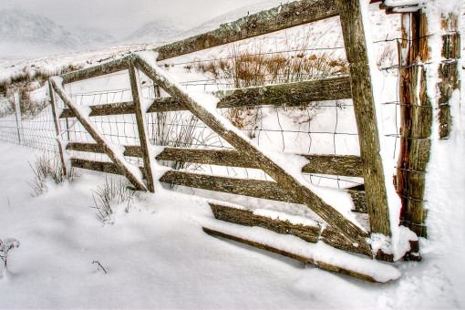 Fence covered in snow