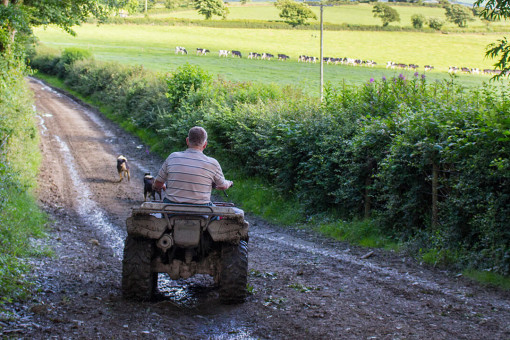 Farmer riding a quad bike surveying his land