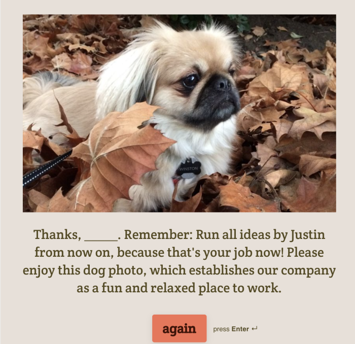 Typeform thank you screen with Winston
