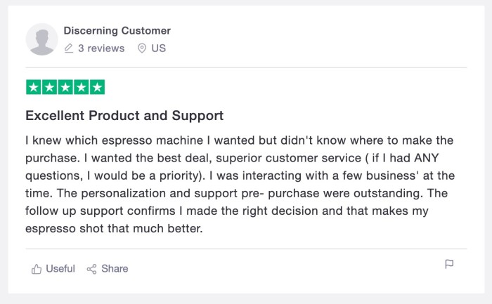 """A positive customer review from """"Discerning Customer"""""""