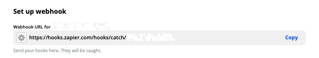 Set up webhook: Webhook URL