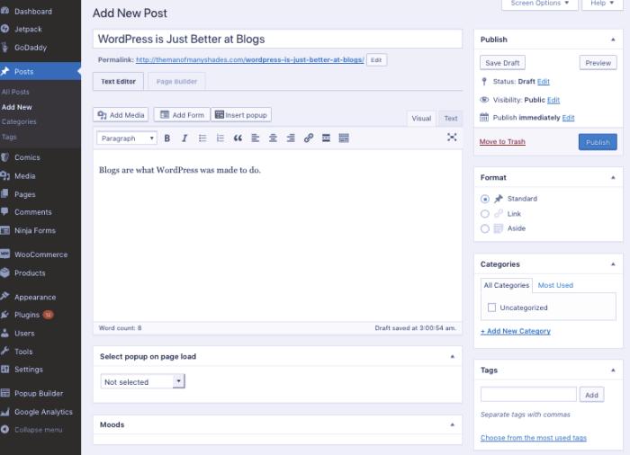 WooCommerce blog editor