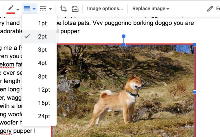 Grosor del borde de Google Docs
