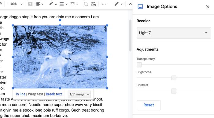 Opciones de imagen de Google Docs