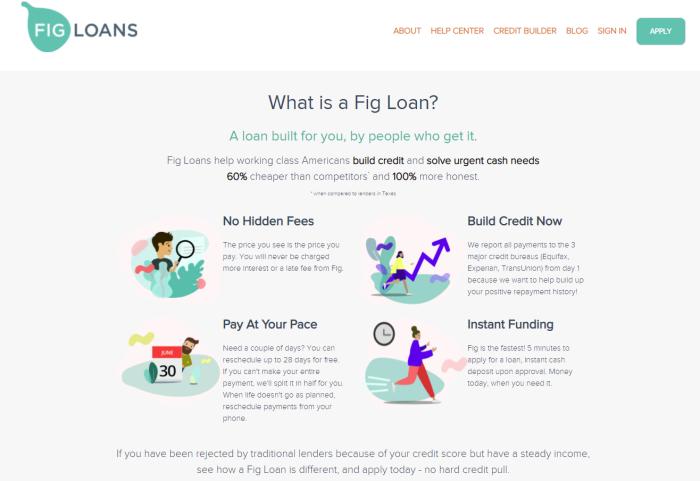 Screenshot of Fig Loans