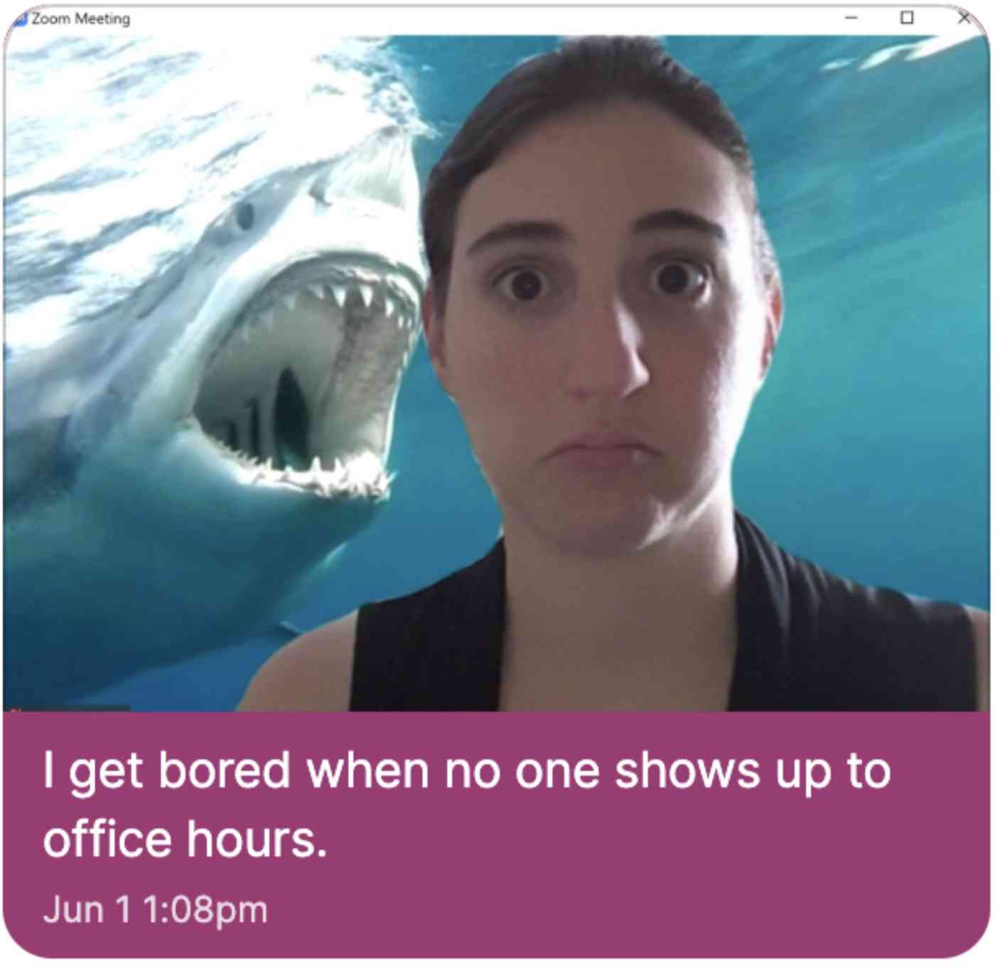 A woman with a Zoom background of a Shark eating her
