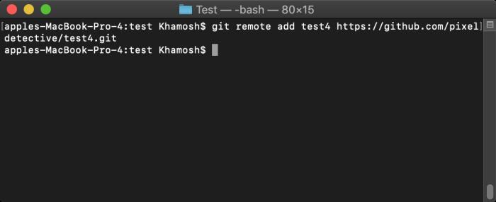 Add remote GitHub repo to local directory