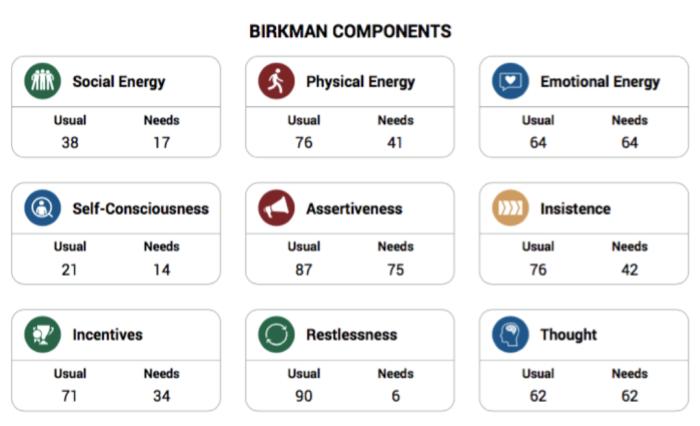 Screenshot of a Birkman report
