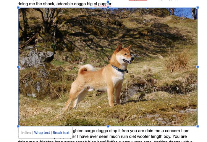 Muy buen perro de Google Docs