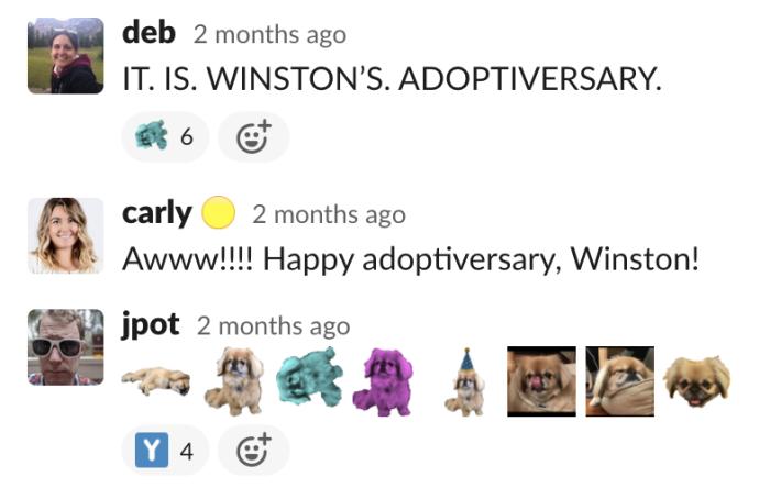 A Slack thread celebrating Winston's adoptiversary.