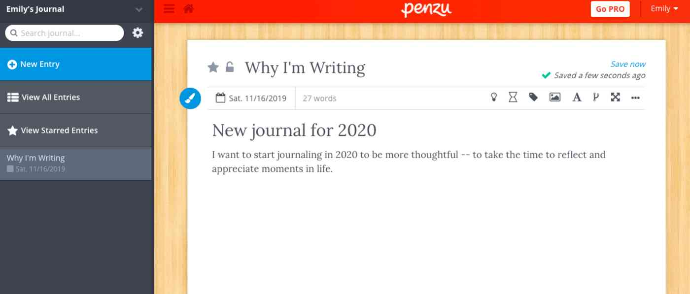 New journal entry in Penzu