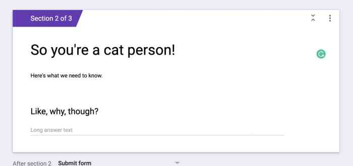 A new section in Google Forms