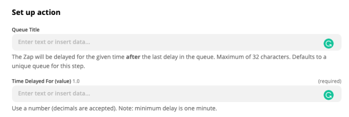 Zap editor settings for Delay After Queue.